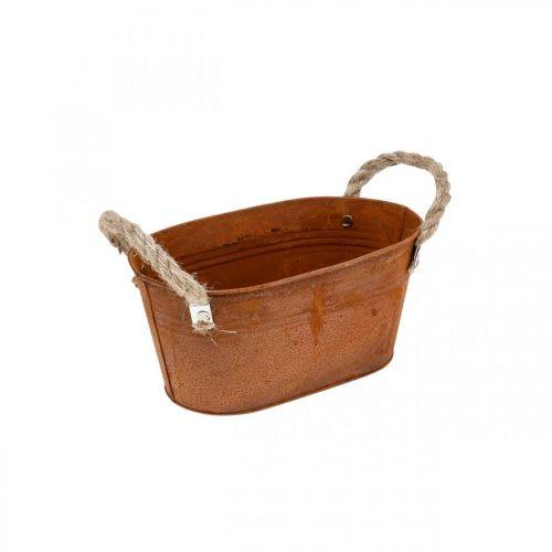Metalskål med håndtag, efterårsdekoration, planter med patina L22cm H11cm
