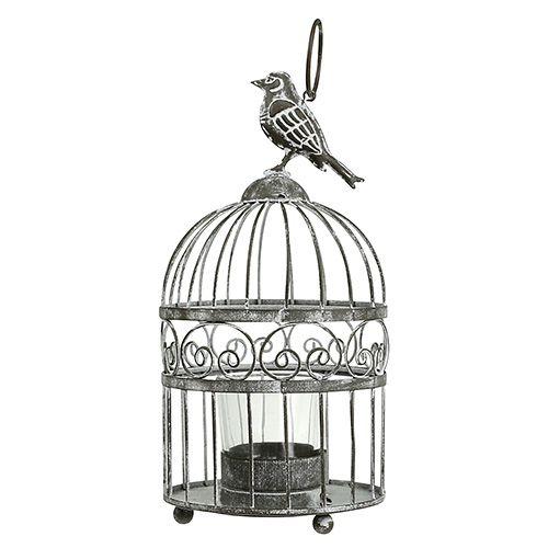 Fuglebur billigt Fuglebur i