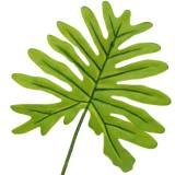 Philodendron bladgrøn 40 cm