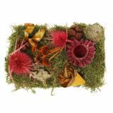 Tør blomsterblanding med kegler og mosrød 150g efterårsdekoration