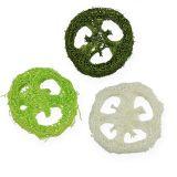 Loofah skiver assorteret Grøn, hvid 5-7,5 cm 24stk